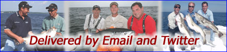 Email Fishing Reports