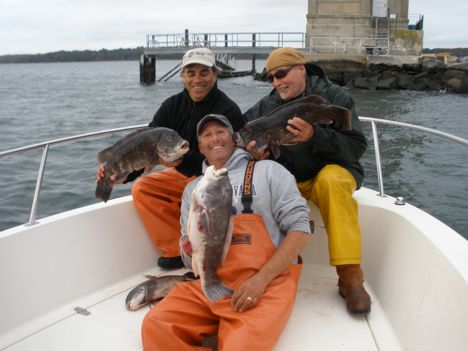 New york fishing report out of town boys slam the tog for Northeast saltwater fishing reports