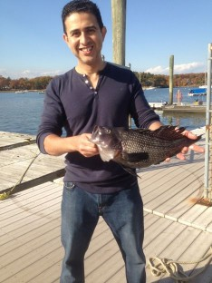 Emad with a beauty Black Sea Bass