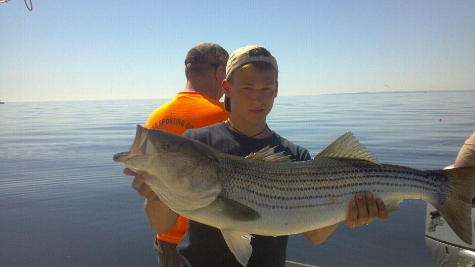 Massachusetts fishing report striper action holds on for Ma fishing report
