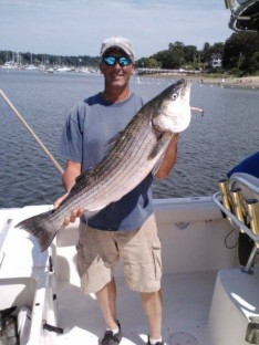 31 lb. Bass !!!