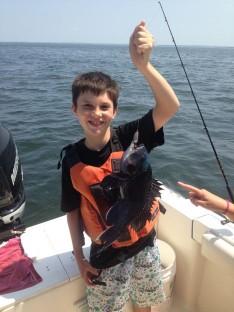 Nice Black Sea Bass...Yum